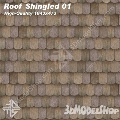 Roof Shingled 01 Main Image